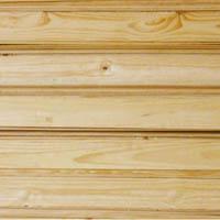 Forro de Pinus Tratado