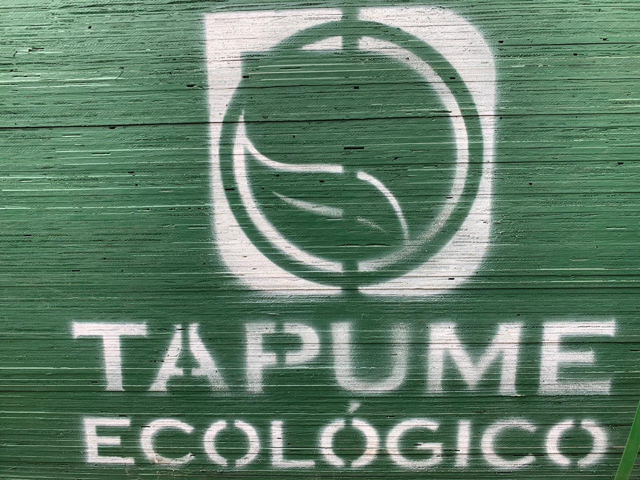 Madeirite Ecológico
